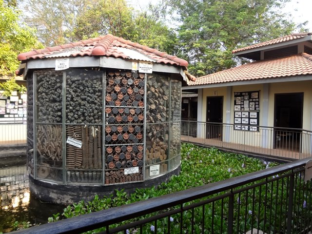 地雷博物館の中央のアキラーさんが撤去された地雷