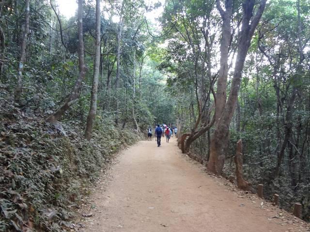 プノンバケン山頂へ登る道