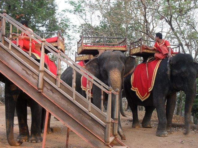 プノンバケンの象