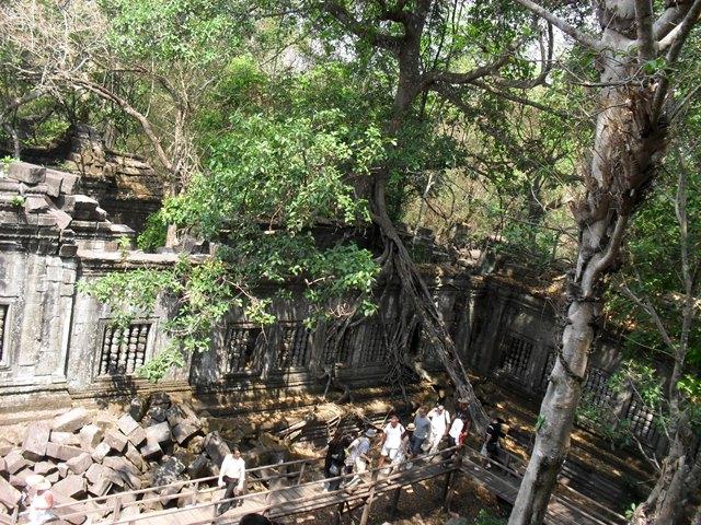 ベンメリア遺跡を見学するツアー観光客