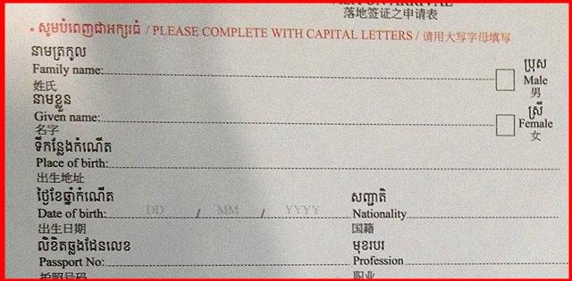 アライバルビザの申請用紙の記入例、上部