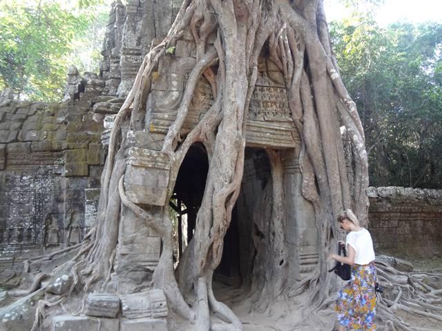 タ・ソムの木で覆われた東側の門