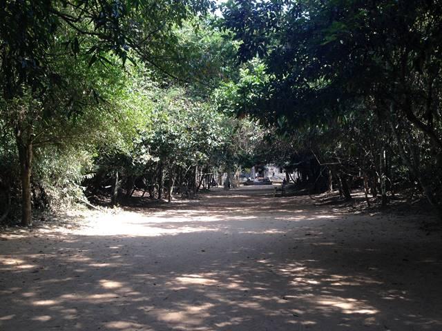 プリアカンの森の小道