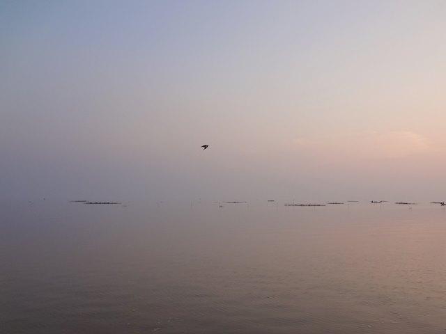 海のようなトンレサップ湖の水平線