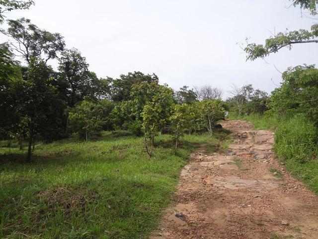 プレアヴィヒア遺跡の帰りの下り道