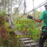 「ジップライン」を楽しもう!アンコール遺跡群の森の中を飛び回る!