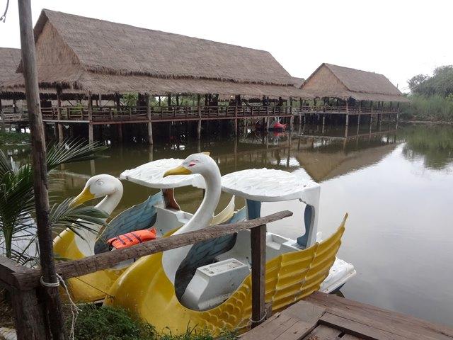 エコリゾートのアヒル・ボート