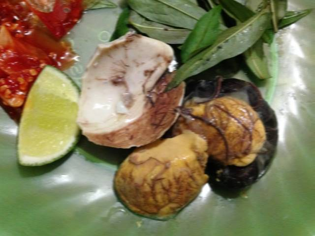 分解した孵化直前のアヒルの卵