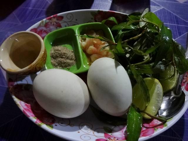 孵化直前のアヒルの卵①