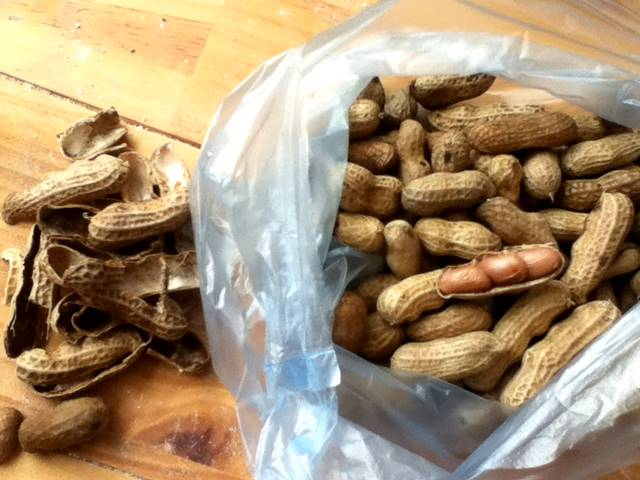 カンボジアのローカルフード「ピーナッツ」