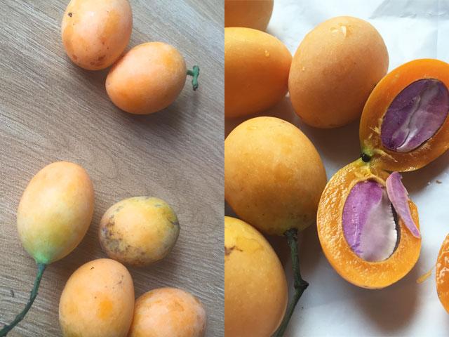 珍フルーツ「プラムマンゴー」