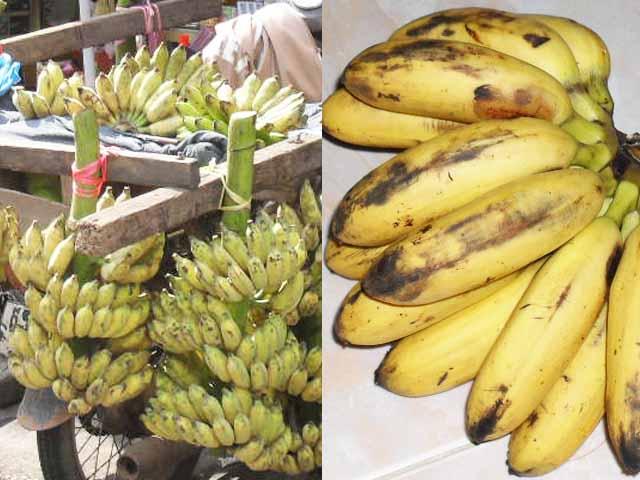 南国フルーツ⑫「バナナ」