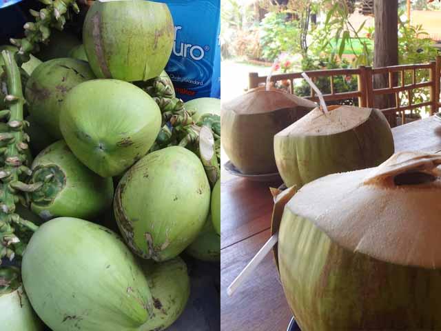 南国フルーツ⑳「ココナッツ」