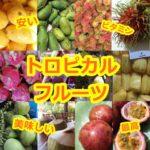 東南アジアで食べられる南国フルーツ20選!
