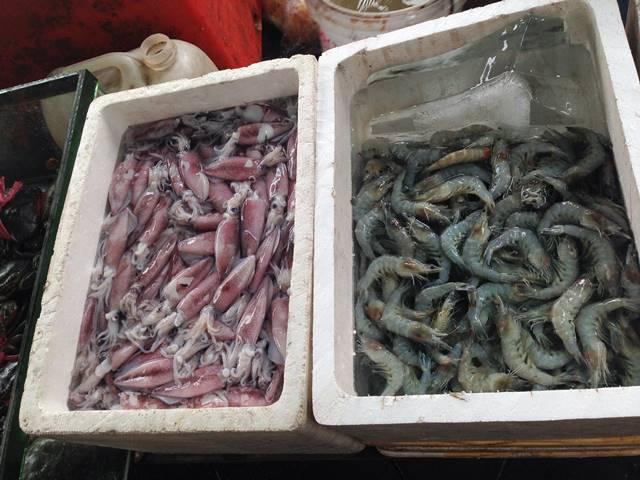 カニ市場で売られるイカやエビ