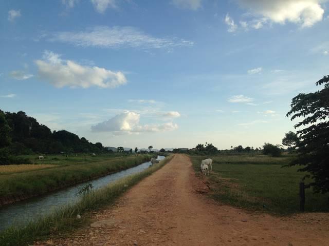 プノン・チュヌークへ続く畦道