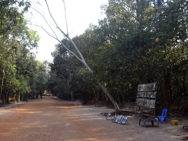 バンテエアイ・サムレの遺跡へ向かう道