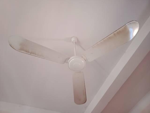 天井についてる扇風機