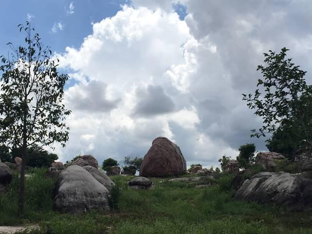 ナウシカのオウムのような岩