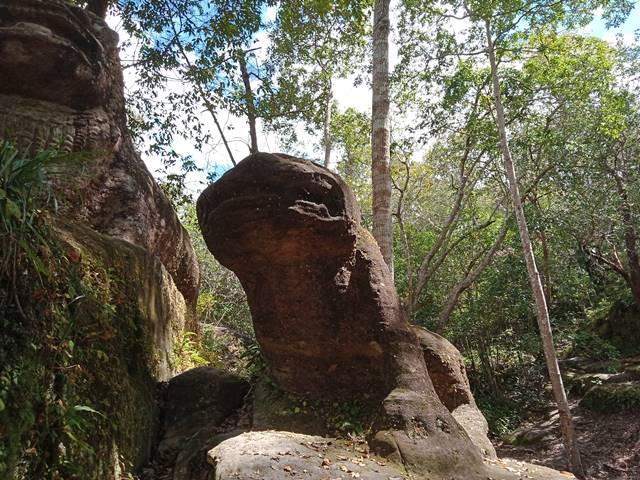 スラードムライの蛙かトラの像