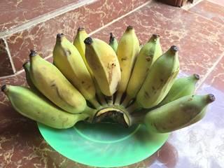 クメール語でバナナ