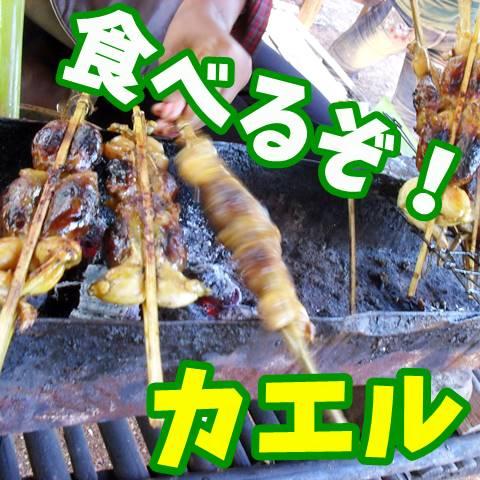 カエルを食べる!いろいろ詰まってて美味しかった